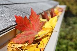Rain Gutter full of leaves